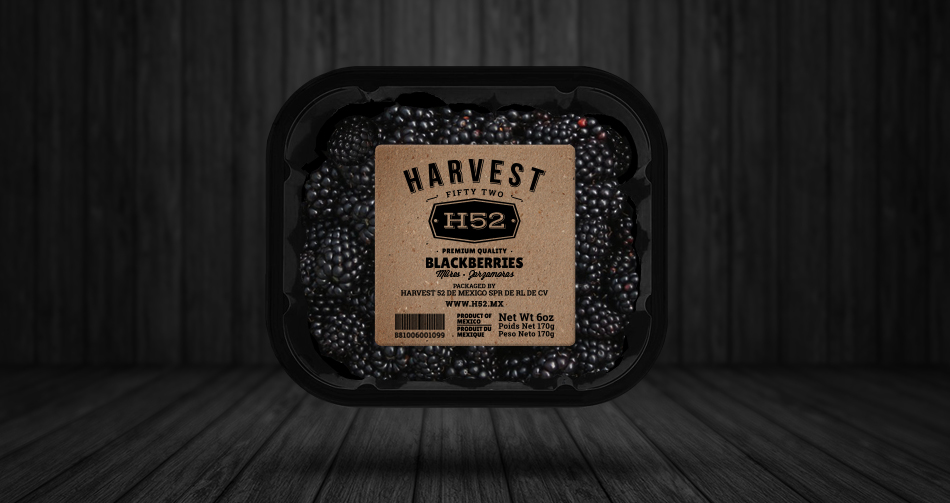 H52_blackberries_packaging_22.jpg
