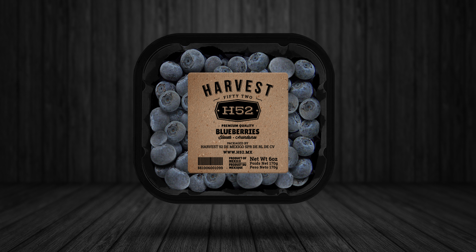 H52_blueberries_package.jpg